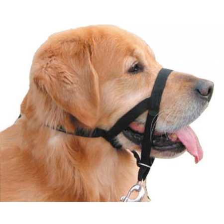 Dog Headcollars