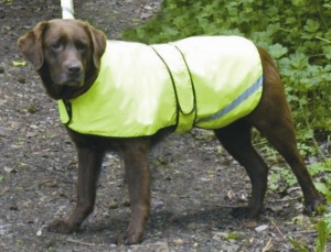 Cosipet Hi-Vis Dog Coat