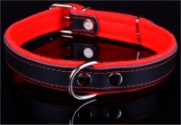 Big Dog World Leather and Felt Collar