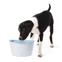 Dogit Drinking Fountain for dogs