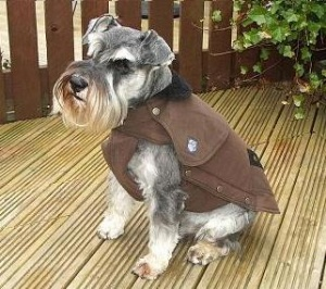 Danish Design Wharfedale Waterproof Dog Coat